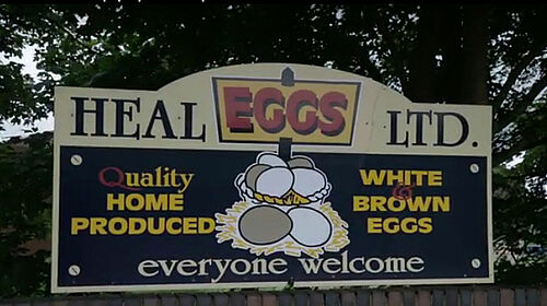 Heal Farms advertises the eggs produced in aviary systems