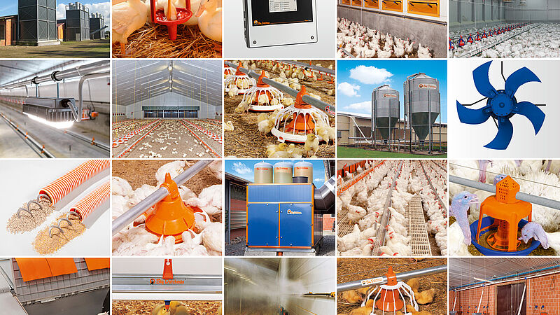 Solutions for poultry growing