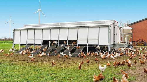 Mobile house for barn, free range and organic egg production