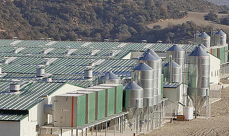 Efficient AirProTec filtration system installed in a breeder farm