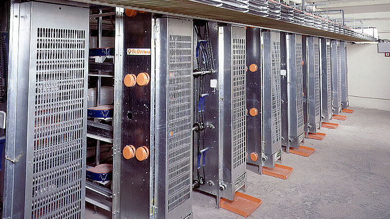 More efficient egg production with the elevator for egg collection in poultry houses