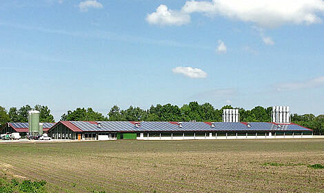 Poultry house with equipment for breeder management