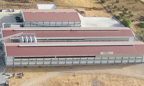 Impressive and new poultry houses for egg production with enriched colony systems