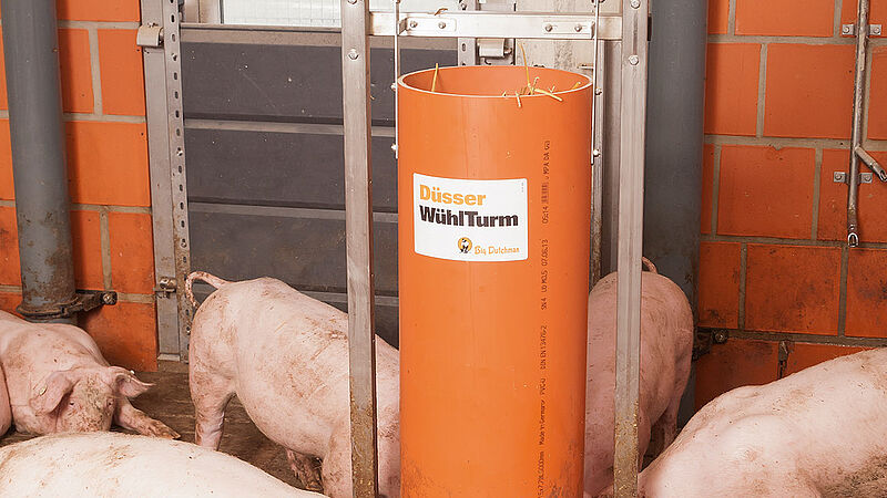 Enrichment toys for pig finishing