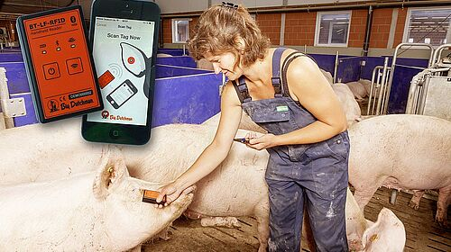 BeastReader: Simple ear tag reding in sow management
