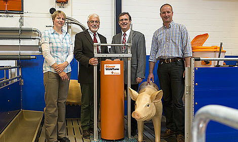 Pig production: foraging tower for increased animal welfare
