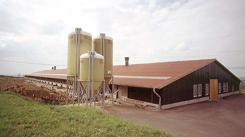 Free range egg production in Saxony