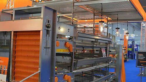 Univent manure belt battery for poultry production