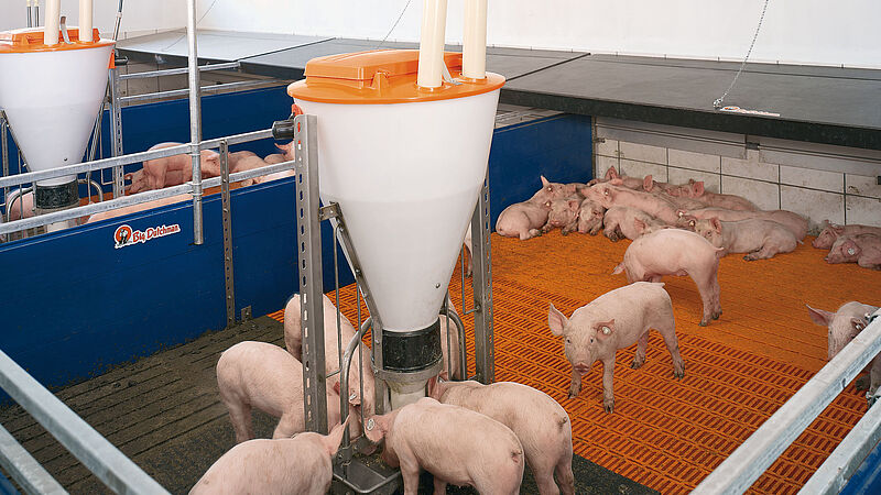 Zone heating pig climate control system