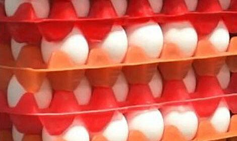 Global Foods eggs