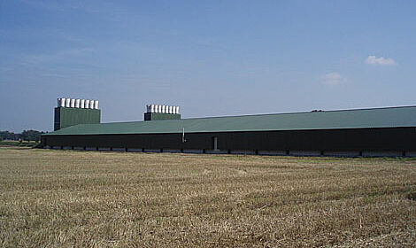 Two new poultry sheds for 84,000