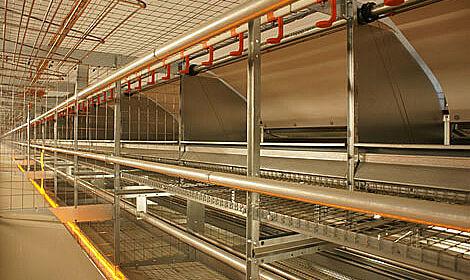 Aviary system for modern barn egg production