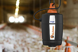 Measuring the ammonia content in poultry production – photo in a barn