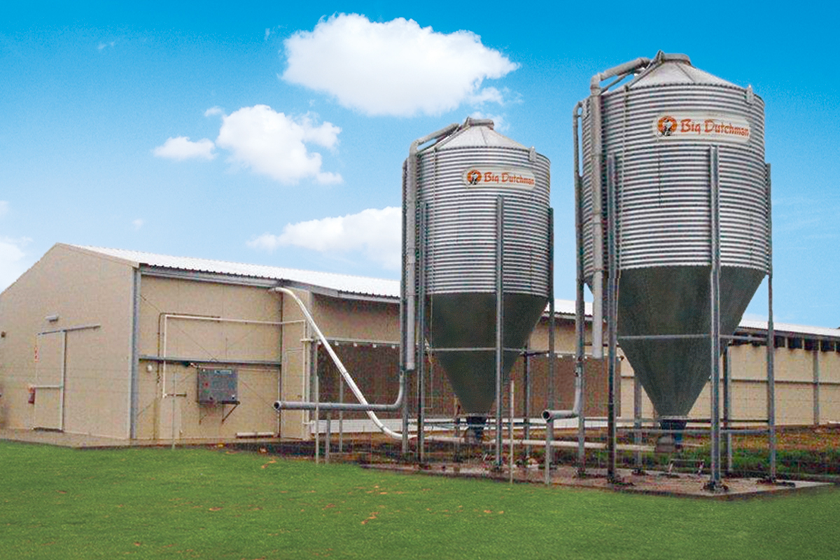 Silos Spirals And Augers Pig Production Big Dutchman