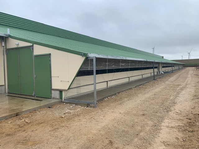 Longitudinal side of the barn with open run