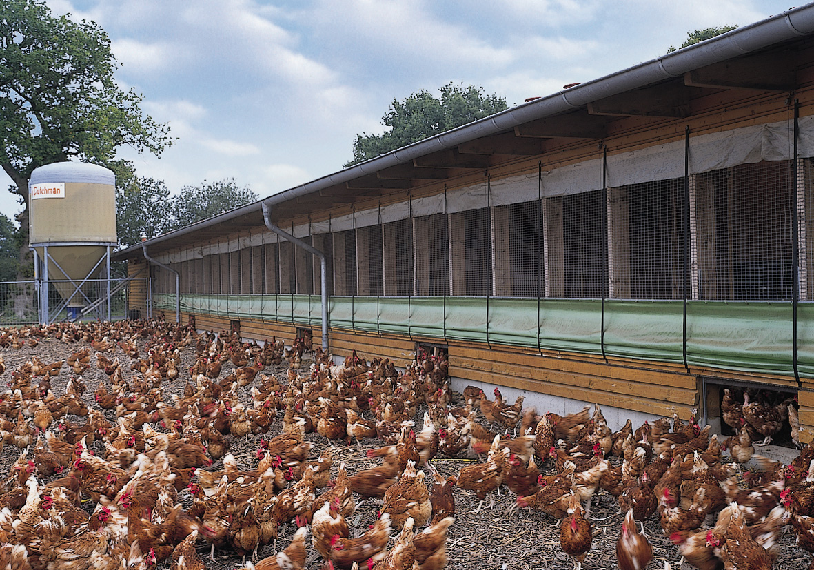 Aviary systems - poultry equipment and more in pictures | Egg